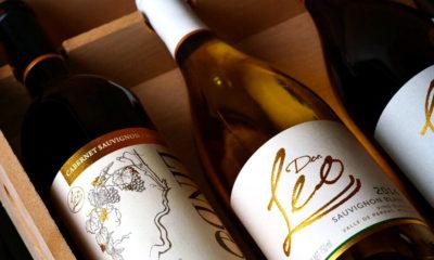 El Mejor Cabernet Sauvignon del Mundo es un Vino Mexicano